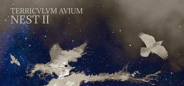 TERRICULUM AVIUM presenta NEST II